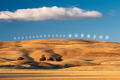 Sunlit Windmills