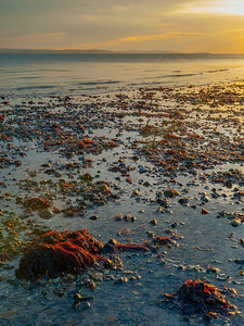 Sunset at Lepe Beach, Hampshire, UK