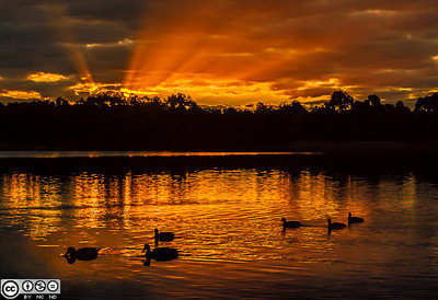 Sunset at Lilydale Lake, Melbourne,  Australia