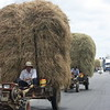 Vietnamese Tractor driver