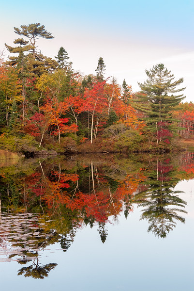 Fall Colour Reflections