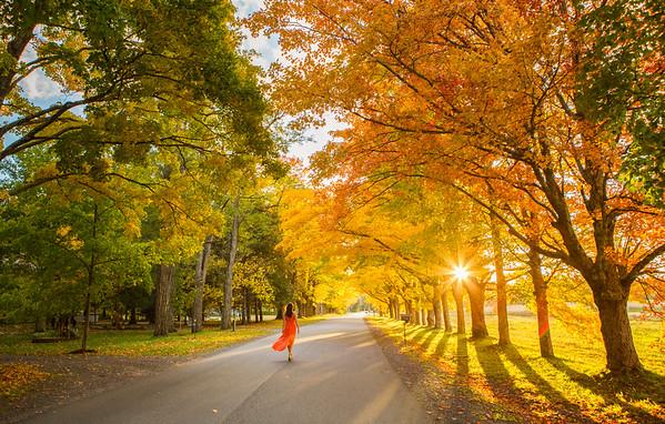 Autumn inspiration, Kingston, Nova Scotia