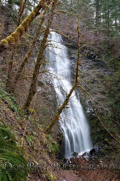 Pheasant Falls #3080