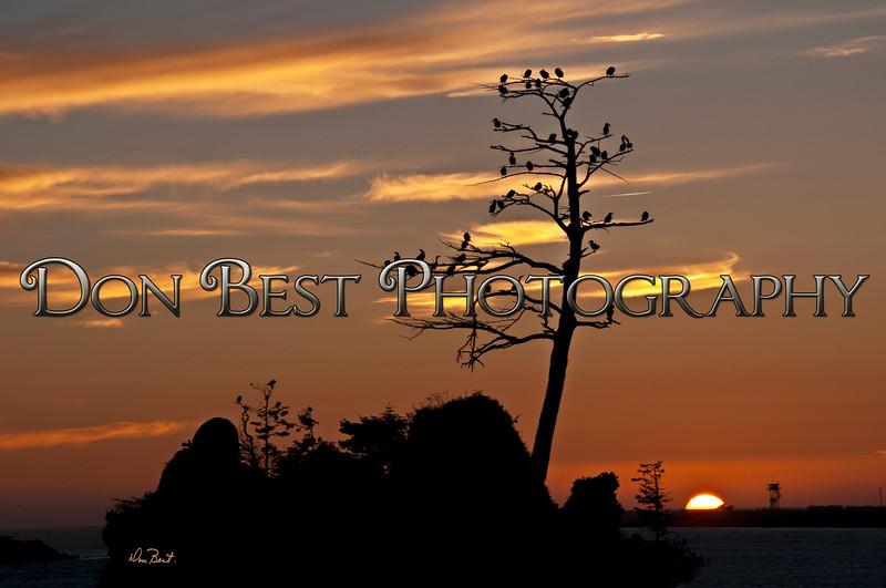 Three Graces Sunset 5467
