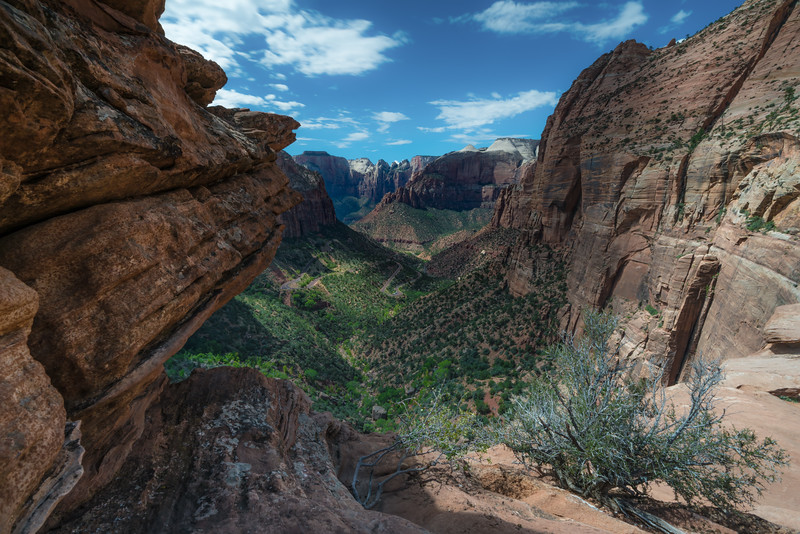 Zion National Park Outlook