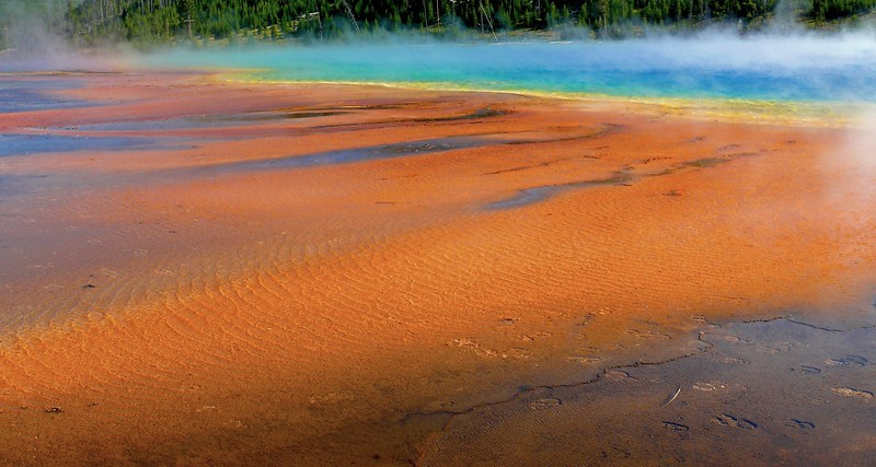 Biscuit Basin Yellowstone