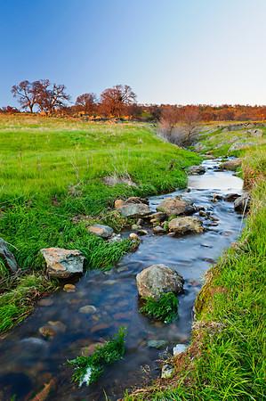 Sierra foothills, California