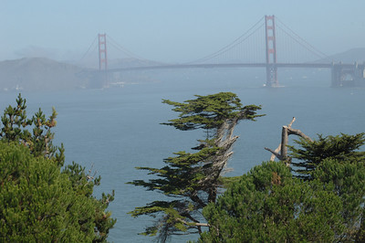 View from Lands End, San Francisco, California