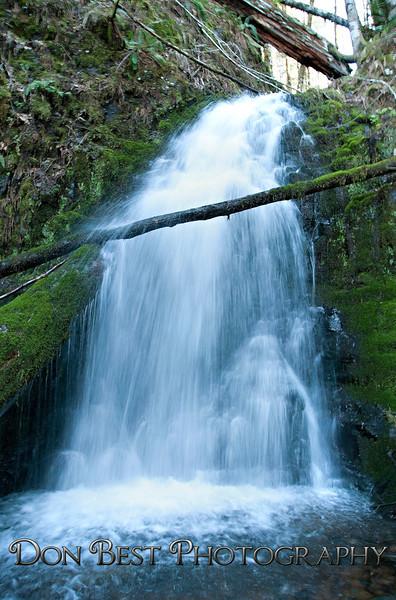 Fern Falls Wilson River Hwy