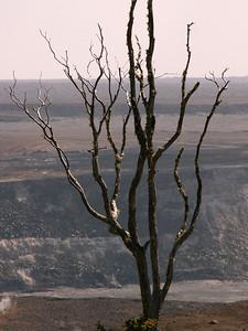 Sulfur Tree - Halemaumau Crater, The Big Island of Hawaii