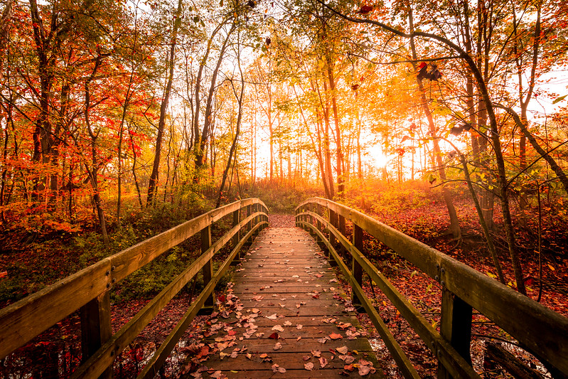 Hubbard Valley Park | Ohio