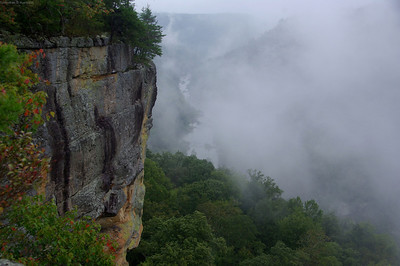 Fog on the Big South Fork