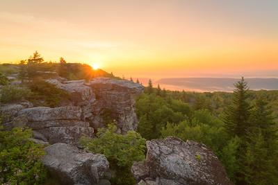 Bear Rocks Sunrise || Dolly Sods Wilderness, WV