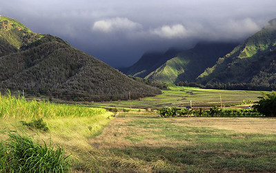 """West Maui Morning"""