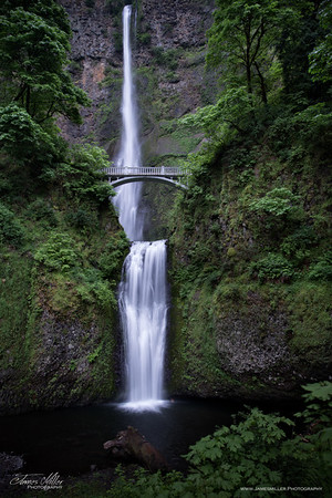 Multnomah Falls at Daybreak