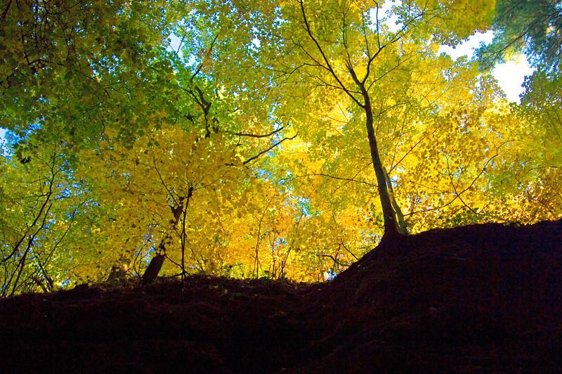 Starve Rock State Park, Illinois
