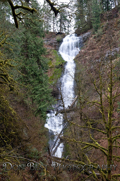 Munsen Creek Falls #1802