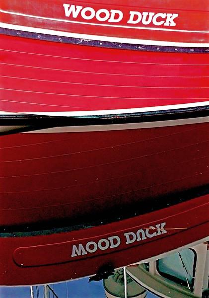 Mood Duck