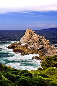 Point Lobos, Monterey, CA