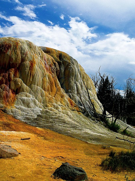 Orange Spring Mound<br /> <br /> Mammoth Hot Springs, Yellowstone