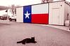 3/8/2013 - Lasara, TX