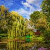 Garden of Inspiration II