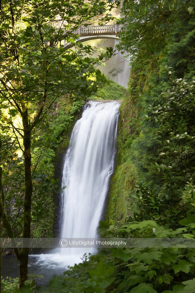 Multnomah Falls , Oregon