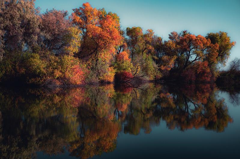 Idaho Colors