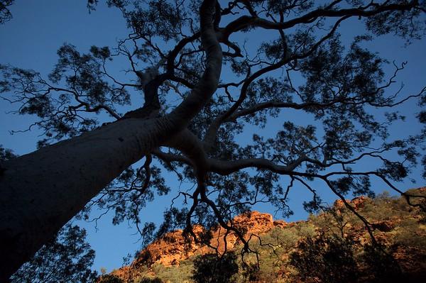 Kings Canyon, Australia.