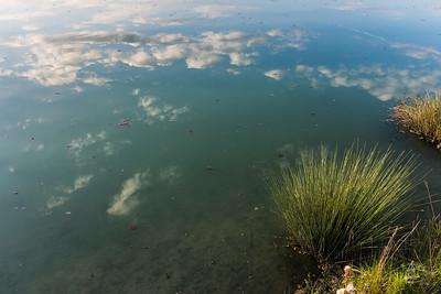 Wolkenspiegelung in einem Anwaltinger Weiher, Affing, Bayern, Deutschland