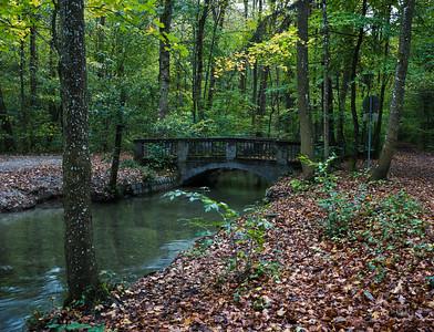 Siebenbrunner Bach im Siebentischwald im Herbst mit Brücke, Augsburg, Schwaben, Bayern, Deutschland