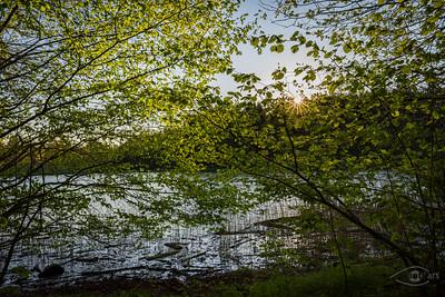 Sonnenuntergang an den Fischweihern von Burgwalden, Nähe Bobingen, Schwaben, Bayern, Deutschland
