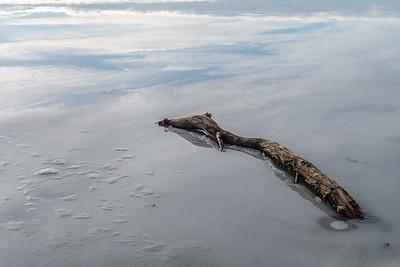 Eis im See, Weitmannsee, Schwaben, Bayern, Deutschland