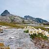 Motiv fra Landegode i Bodø