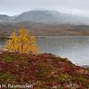 Lurfjell Bodø