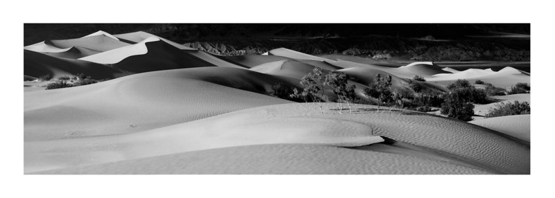 Dune Panorama- Mesquite Dunes, Death Valley.