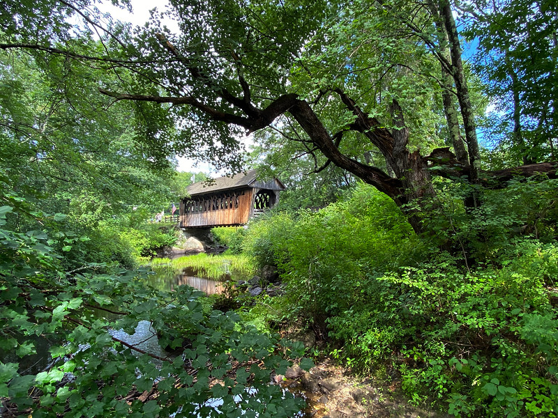 Bog Covered Bridge III