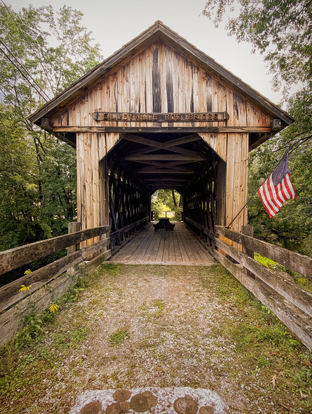 Bog Covered Bridge IV