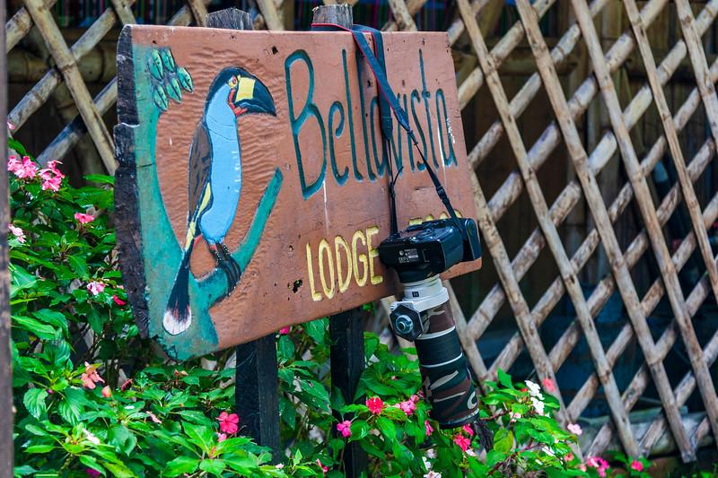 Bellavista Cloud Forest Reserve, Bellavista Lodge, in Bellavista, Ecuador