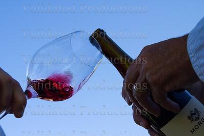 Morgan Pinot Noir Tondre Grapefield