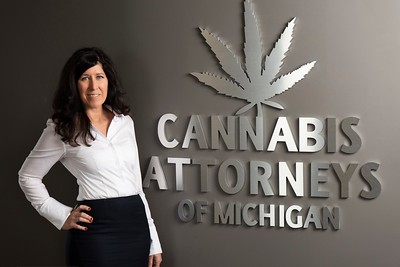 Cannabis lawyer