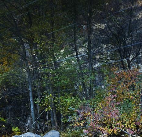 Spirits of Satus Creek