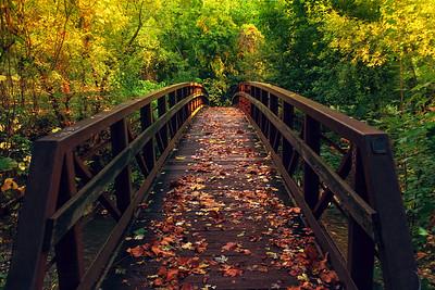 Footbridge Foliage