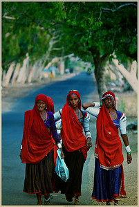 After a long day and hard working, it is time to walk back home. This photo was taken during a roadside stop near the town of Ranakpur in India. The local people are happy, very welcoming, and very hard working.