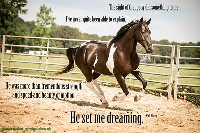 He Set Me Dreaming