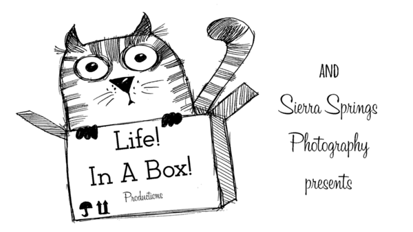 Life! In a Box! logo