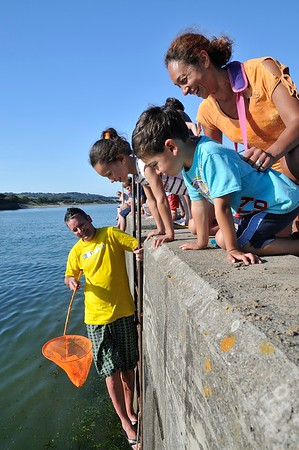 Family crabbing,Abersoch. Visit Wales