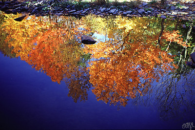 New England reflections