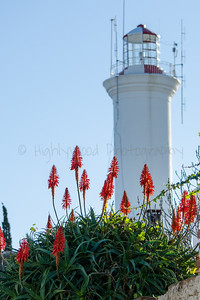 Flowers Adorn the Pathway to El Faro Lighthouse, Colonia del Sacramento, Uruguay