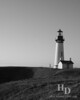 Yaquina head, OR